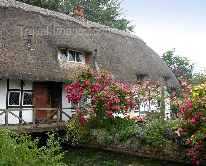 england278: England (UK) - Alresford (Hampshire): English cottage - photo by T.Marshall - (c) Travel-Images.com - Stock Photography agency - Image Bank