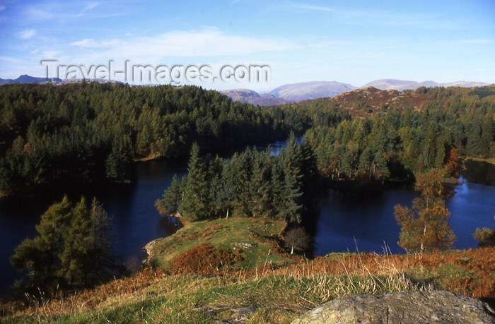england324: England (UK) - Tarn Hows - Lake District: Finnish landscape - lakes and forest (photo by T.Brown) - (c) Travel-Images.com - Stock Photography agency - Image Bank