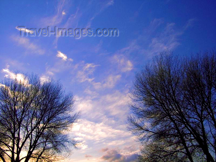 england345: UK - England - Warrington: Evening sky and trees - school grounds - Latchford - photo by D.Jackson - (c) Travel-Images.com - Stock Photography agency - Image Bank