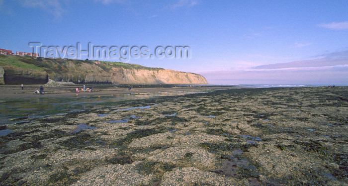 england511: Robin Hood's Bay, North Yorkshire, England: low tide - photo by D.Jackson - (c) Travel-Images.com - Stock Photography agency - Image Bank