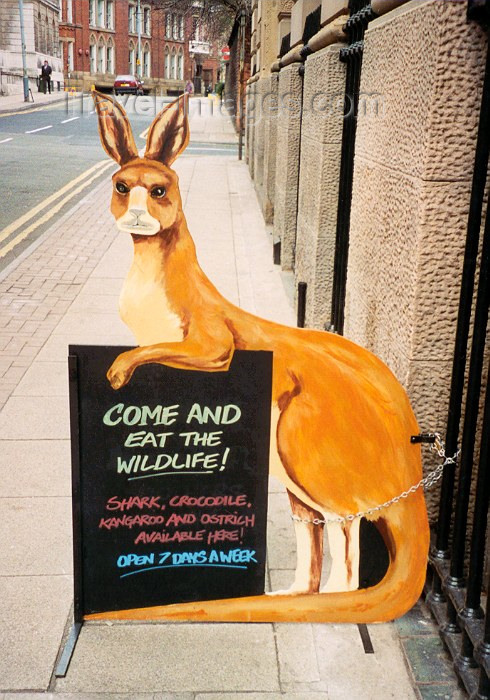 england54: Manchester, North West, England: free for all menu - kangaroo at a restaurant - kangaroo - photo by M.Torres - (c) Travel-Images.com - Stock Photography agency - Image Bank