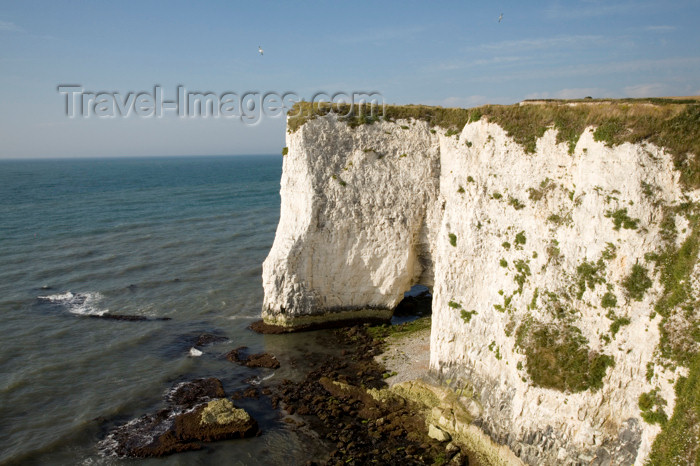 england547: Old Harry Rocks, Jurassic Coast, Dorset, England: white cliffs over the English Channel - UNESCO World Heritage Site - photo by I.Middleton - (c) Travel-Images.com - Stock Photography agency - Image Bank