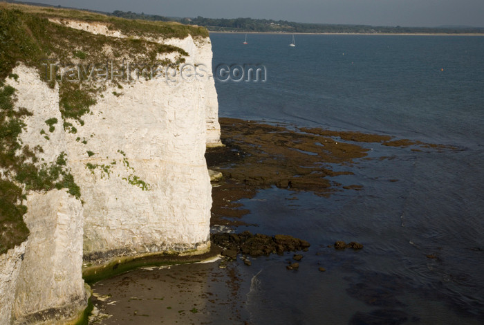 england548: Old Harry Rocks, Jurassic Coast, Dorset, England: cliffs near Studland - UNESCO World Heritage Site - photo by I.Middleton - (c) Travel-Images.com - Stock Photography agency - Image Bank
