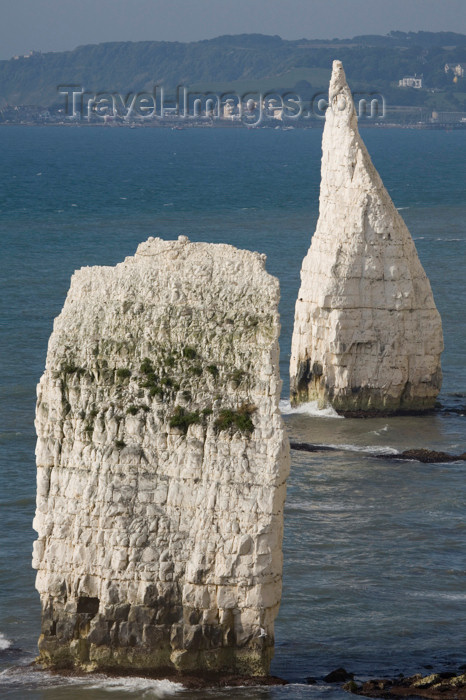 england554: Old Harry Rocks, Jurassic Coast, Dorset, England: The Pinnacles - chalk stacks - UNESCO World Heritage Site - photo by I.Middleton - (c) Travel-Images.com - Stock Photography agency - Image Bank