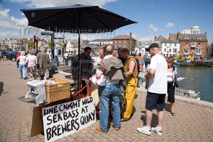 england563: Weymouth, Dorset, England: people buying fresh line caught sea bass off local man in Brewers Quay - photo by I.Middleton - (c) Travel-Images.com - Stock Photography agency - Image Bank