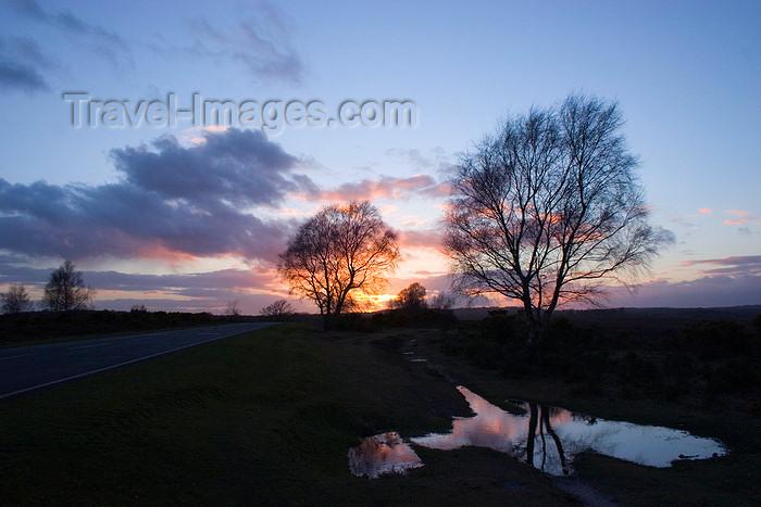 england682: Calshot, Solent, Hampshire, South East England, UK: bird shaped puddle at sunset - photo by I.Middleton - (c) Travel-Images.com - Stock Photography agency - Image Bank