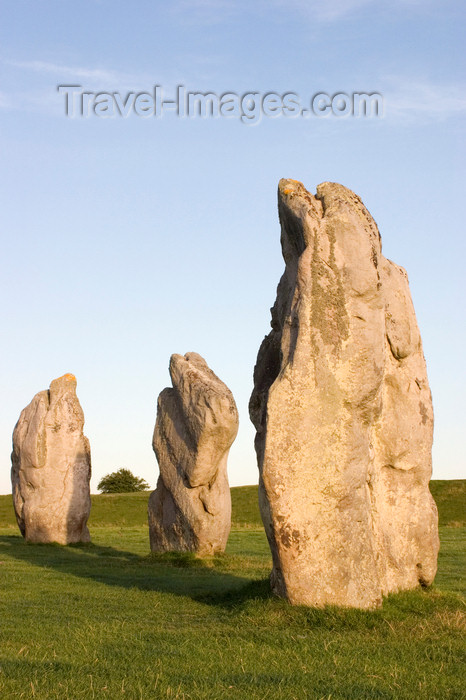 england699: Avebury, Wiltshire, South West England, UK: Avebury stone circle - part of the outer circle - UNESCO World Heritage Site - photo by I.Middleton - (c) Travel-Images.com - Stock Photography agency - Image Bank