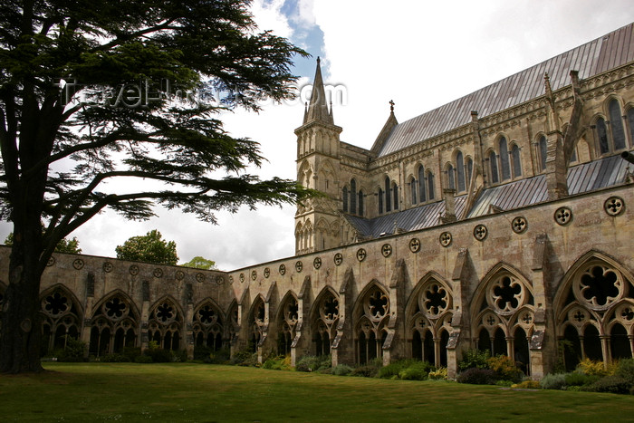 england704: Salisbury, Wiltshire, South West England, UK: Salisbury Cathedral - cloister - Church of England - photo by I.Middleton - (c) Travel-Images.com - Stock Photography agency - Image Bank