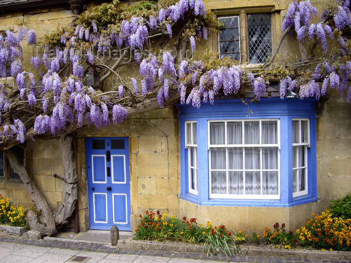 england761: Broadway village, Cotswold, Worcestershire, West Midlands, England, UK: facade with clusters of flowers - photo by T.Brown - (c) Travel-Images.com - Stock Photography agency - Image Bank