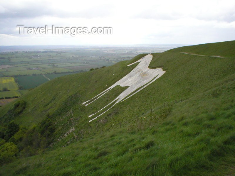 england79: Westbury (Wiltshire): the Westbury White Horse - photo by N.Clark - (c) Travel-Images.com - Stock Photography agency - Image Bank