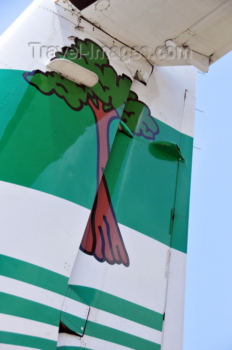 equatorial-guinea6: Bioko / Fernando Pó island, Equatorial Guinea: Malabo - Ceiba tree on the tail of a Ceiba Intercontinental ailines ATR 72-212A at the airport - logo - photo by M.Torres - (c) Travel-Images.com - Stock Photography agency - Image Bank