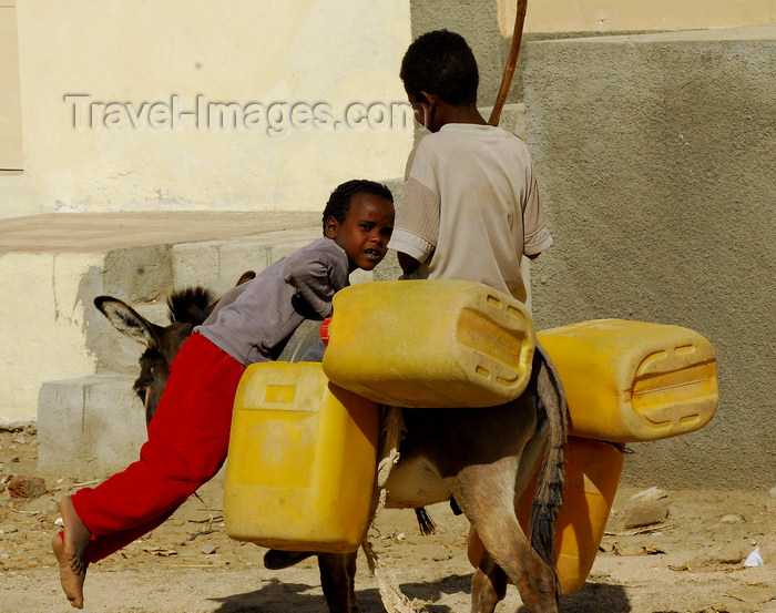 eritrea42: Eritrea - Keren, Anseba region: going to a well to get water - children on a donkey with plastic tanks - photo by E.Petitalot - (c) Travel-Images.com - Stock Photography agency - Image Bank
