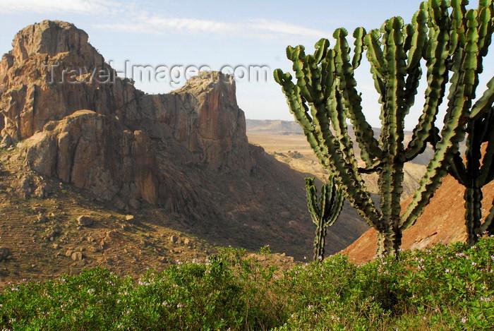 eritrea70: Eritrea - Senafe, Southern region: landscape of rocks and cacti - photo by E.Petitalot - (c) Travel-Images.com - Stock Photography agency - Image Bank