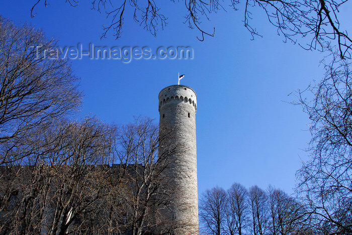 estonia179: Estonia, Tallinn: Pikk Herman - Toompea Castle - photo by J.Pemberton - (c) Travel-Images.com - Stock Photography agency - Image Bank