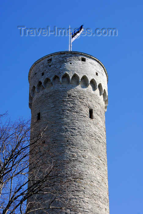 estonia45: Estonia, Tallinn: Tall Hermann tower - Toompea Castle - Estonian flag - photo by J.Pemberton - (c) Travel-Images.com - Stock Photography agency - Image Bank