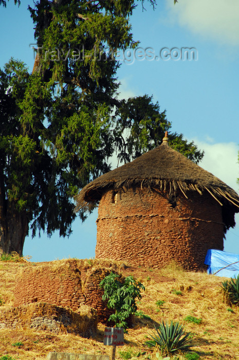 ethiopia188: Lalibela, Amhara region, Ethiopia: hut under a tree - photo by M.Torres - (c) Travel-Images.com - Stock Photography agency - Image Bank