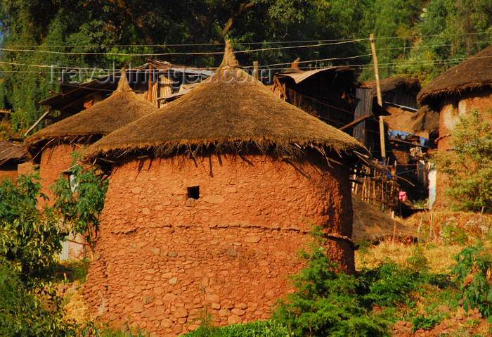 ethiopia190: Lalibela, Amhara region, Ethiopia: cylindrical huts with thatched roofs - photo by M.Torres - (c) Travel-Images.com - Stock Photography agency - Image Bank