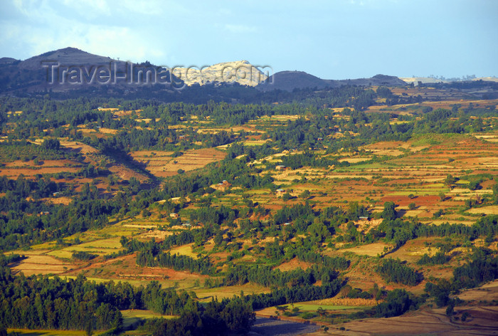 ethiopia234: Gondar, Amhara Region, Ethiopia: rural landscape - photo by M.Torres - (c) Travel-Images.com - Stock Photography agency - Image Bank
