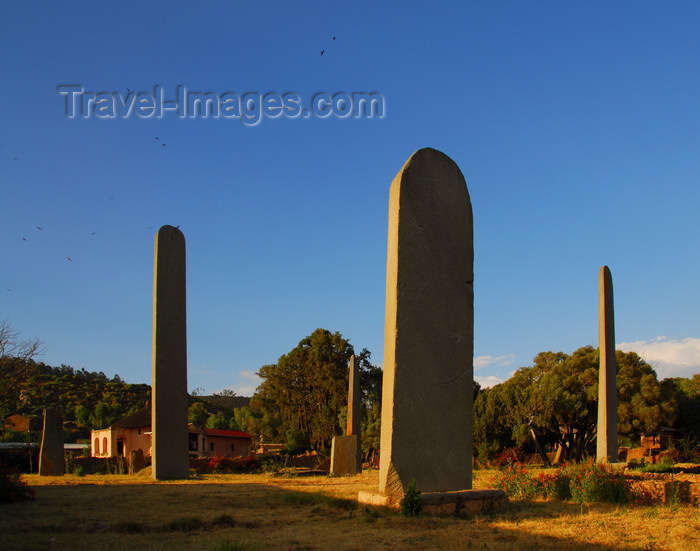 ethiopia403: Axum - Mehakelegnaw Zone, Tigray Region: plain stelae in the golden hour sun - Northern stelae field - photo by M.Torres - (c) Travel-Images.com - Stock Photography agency - Image Bank