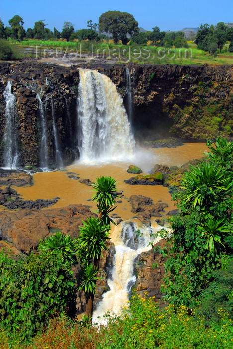 ethiopia447: Blue Nile Falls - Tis Issat, Amhara, Ethiopia: two steps of basalt - photo by M.Torres - (c) Travel-Images.com - Stock Photography agency - Image Bank