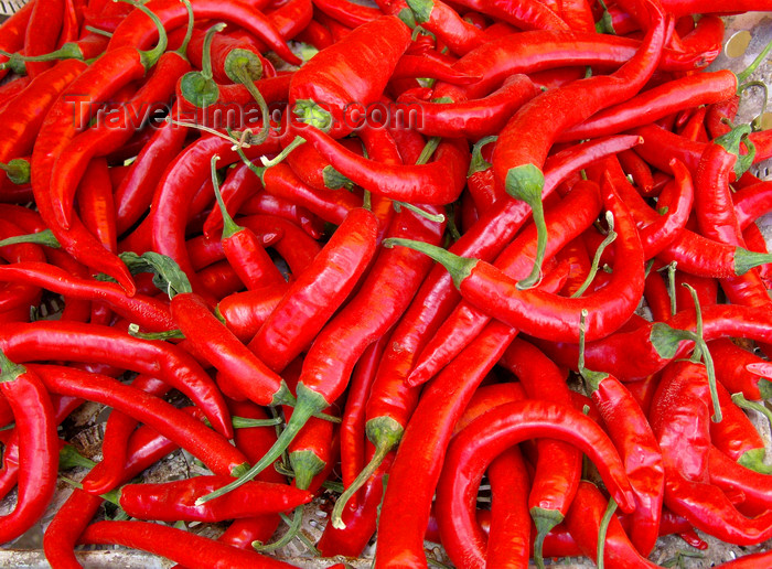 ethiopia48: Addis Ababa, Ethiopia: red chili peppers - Capsicum - photo by M.Torres - (c) Travel-Images.com - Stock Photography agency - Image Bank
