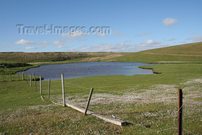 falkland29: Falkland islands - East Falkland - Port Louis - pond - photo by Christophe Breschi - (c) Travel-Images.com - Stock Photography agency - Image Bank