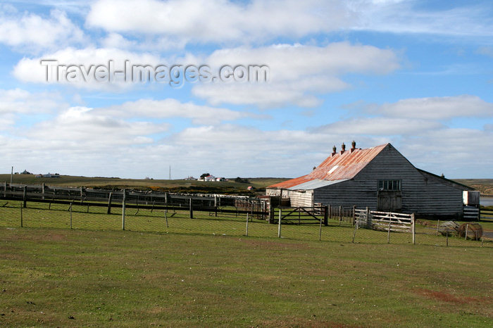 falkland40: Falkland islands - East Falkland - Salvador - farm - photo by Christophe Breschi - (c) Travel-Images.com - Stock Photography agency - Image Bank
