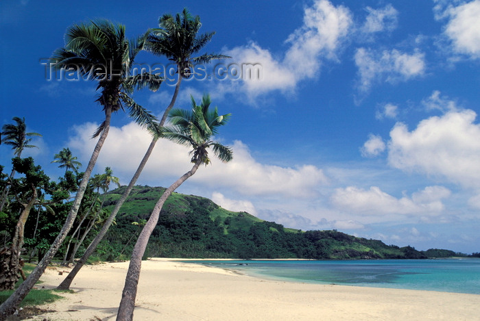 fiji23: Nacula Island, Yasawa group, Fiji: idyllic tropical beach with white sand, coconut trees and turquoise water - photo by C.Lovell - (c) Travel-Images.com - Stock Photography agency - Image Bank