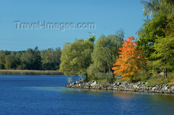 fin148: Finland - Hämeenlinna / Tavastehus, Aulanko natural reserve and park - Southern Finland province - Tavastia Proper region, Finnish national landscape - trees by the lake - photo by Juha Sompinmäki - (c) Travel-Images.com - Stock Photography agency - Image Bank