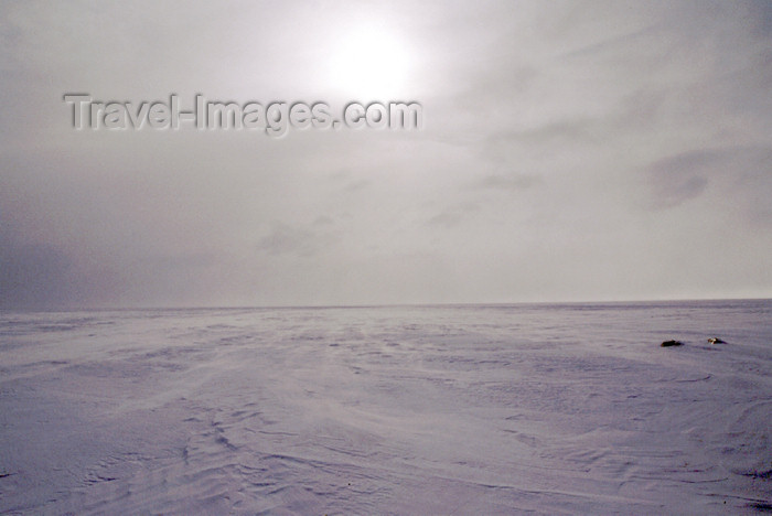 fin31: Finland - Lapland - snow horizon - Arctic images by F.Rigaud - (c) Travel-Images.com - Stock Photography agency - Image Bank
