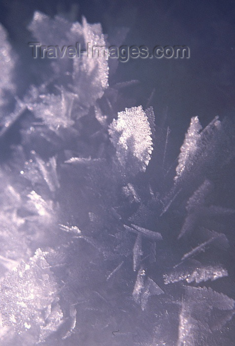 fin47: Finland - Lapland: ice crystals (photo by F.Rigaud) - (c) Travel-Images.com - Stock Photography agency - Image Bank