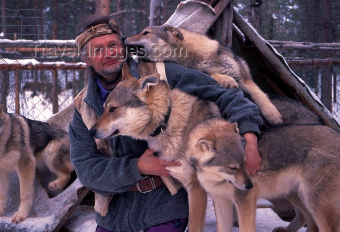 fin53: Finland - Lapland: huskies with owner - dogs (photo by F.Rigaud) - (c) Travel-Images.com - Stock Photography agency - Image Bank