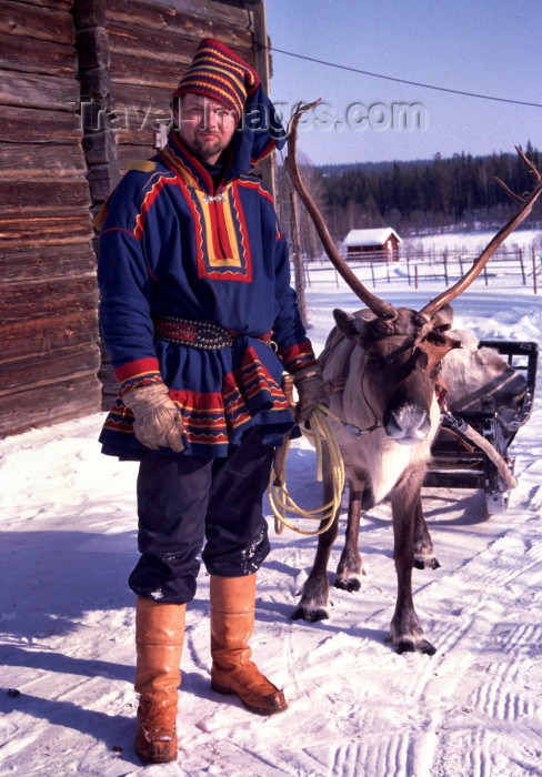 fin60: Finland - Levi: Sami farm - sledge and reindeer - Rangifer tarandus (photo by F.Rigaud) - (c) Travel-Images.com - Stock Photography agency - Image Bank