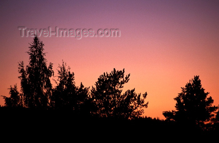 fin73: Finland - Tahko: midnight sun (photo by F.Rigaud) - (c) Travel-Images.com - Stock Photography agency - Image Bank