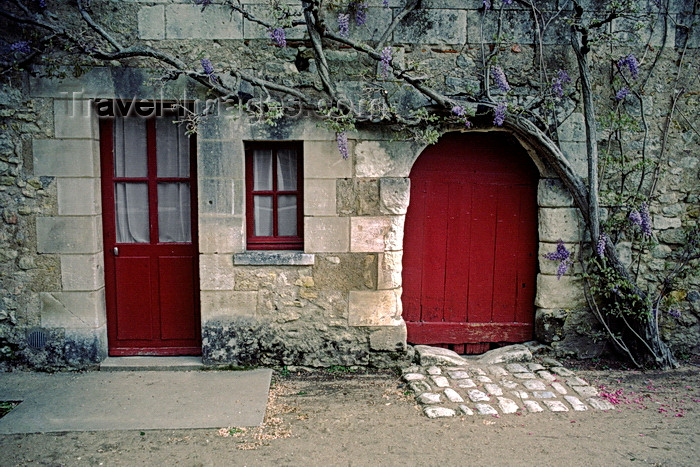 france1077: Chenonceaux, Indre-et-Loire, Centre, France: winery with red door and purple wisteria - Loire Valley - photo by C.Lovell - (c) Travel-Images.com - Stock Photography agency - Image Bank