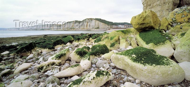 france1085: France - Côte d'Albâtre / Alabaster Coast - Pays de Caux (Seine-Maritime, Haute-Normandie): white chalk cliffs - photo by W.Allgöwer - Die Alabasterküste. Der Name kommt von den Alabaster-farbenen, bis über 100 m hohen Steilklippen, die nur gelegentlich v - (c) Travel-Images.com - Stock Photography agency - Image Bank