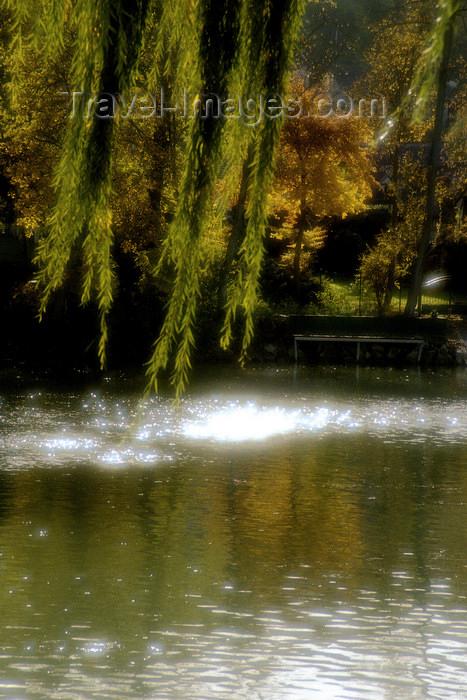 france1137: La Varenne, Val-de-Marne, Ile-de-France: sun sparks on the river Manre - photo by Y.Baby - (c) Travel-Images.com - Stock Photography agency - Image Bank
