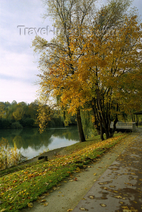 france1141: La Varenne, Val-de-Marne, Ile-de-France: autumn - trees along the Marne river - photo by Y.Baby - (c) Travel-Images.com - Stock Photography agency - Image Bank