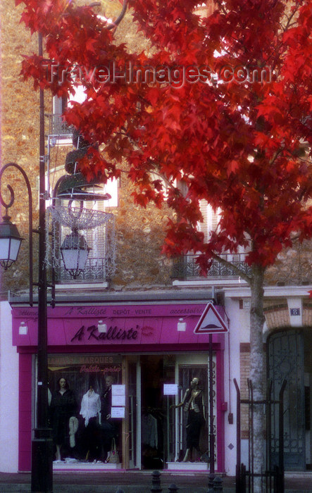 france1144: La Varenne, Val-de-Marne, Ile-de-France: boutique and red tree - photo by Y.Baby - (c) Travel-Images.com - Stock Photography agency - Image Bank