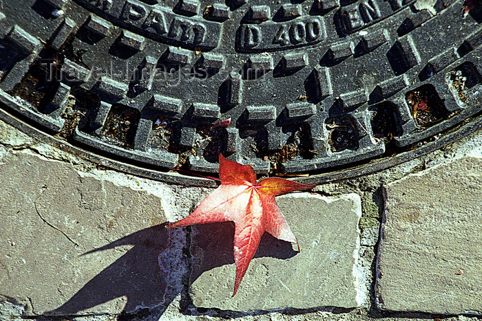 france1150: La Varenne, Val-de-Marne, Ile-de-France: manhole and leaf - autumn - photo by Y.Baby - (c) Travel-Images.com - Stock Photography agency - Image Bank