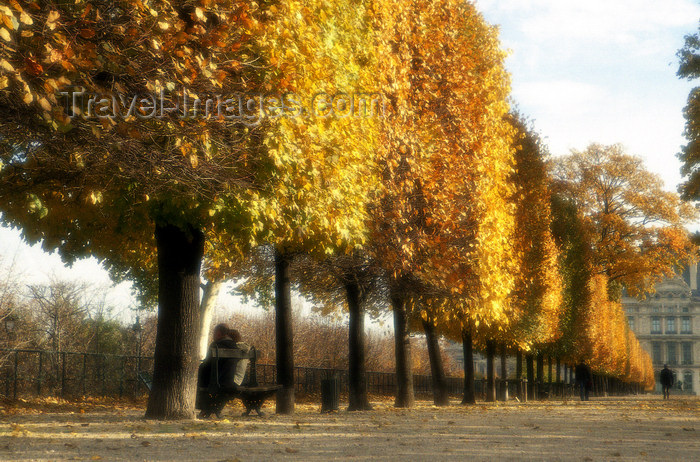 france1202: Paris: Tuileries Garden and the Louvre - Autumn - photo by Y.Baby - (c) Travel-Images.com - Stock Photography agency - Image Bank