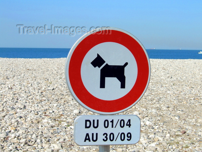 france1235: Le Havre, Seine-Maritime, Haute-Normandie, France: No Dogs allowed sign, Beach - photo by A.Bartel - (c) Travel-Images.com - Stock Photography agency - Image Bank