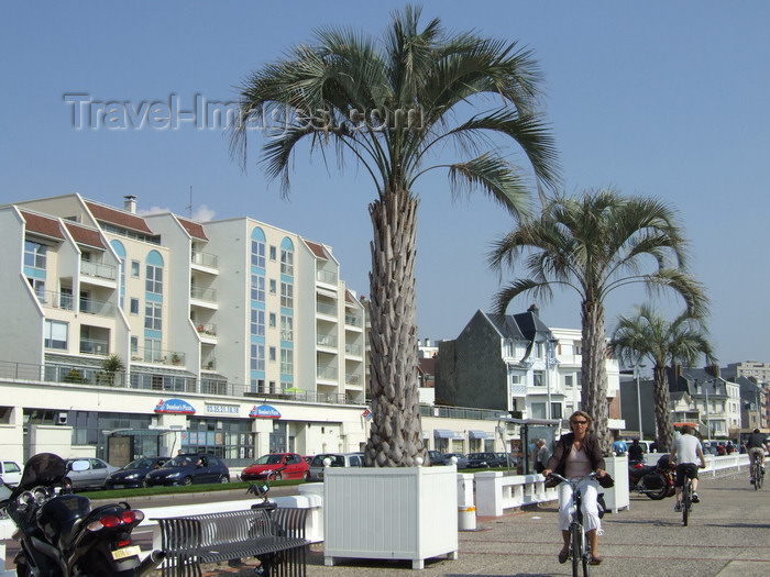 france1251: Le Havre, Seine-Maritime, Haute-Normandie, France: palm trees and bikers, Seafront - Normandy - photo by A.Bartel - (c) Travel-Images.com - Stock Photography agency - Image Bank