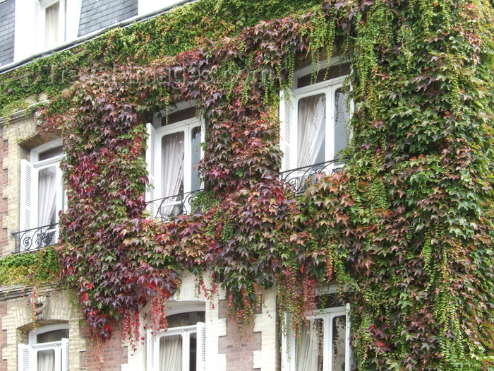 france1255: Le Havre, Seine-Maritime, Haute-Normandie, France: Ivy Covered House - brick facade - photo by A.Bartel - (c) Travel-Images.com - Stock Photography agency - Image Bank