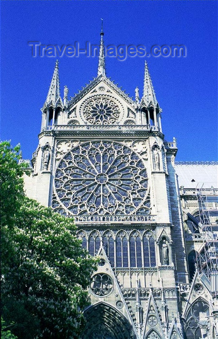 france194: France - Paris: Notre Dame - detail - rose-window - French Gothic architecture - Unesco world heritage site - photo by D.Jackson - (c) Travel-Images.com - Stock Photography agency - Image Bank