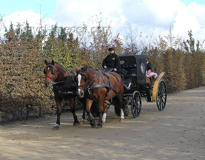 france251: France - Versailles (Yvelines): horse carriage - barouche - photo by J.Kaman - (c) Travel-Images.com - Stock Photography agency - Image Bank