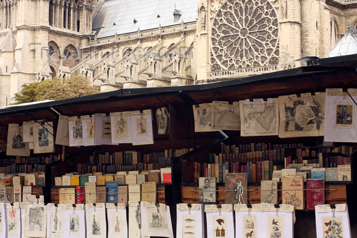 france944: Paris, France: book market at Notre-Dame cathedral - Île de la Cité - 4e arrondissement - photo by A.Bartel - (c) Travel-Images.com - Stock Photography agency - Image Bank