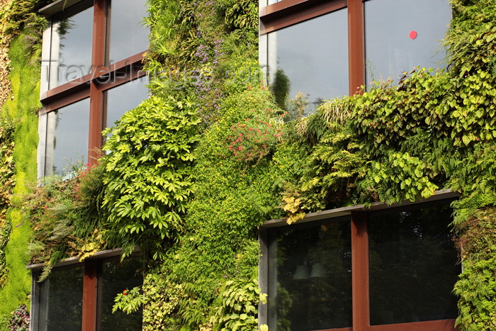 france947: Paris, France: Musée du quai Branly (MQB) - Quai Branly Museum - architect Jean Nouvel - planted green wall designed by Gilles Clément and Patrick Blanc - 7e arrondissement - photo by A.Bartel - (c) Travel-Images.com - Stock Photography agency - Image Bank