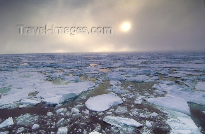 franz-josef50: Franz Josef Land Pack ice and low, diffuse sun from ship - Arkhangelsk Oblast, Northwestern Federal District, Russia - photo by Bill Cain - (c) Travel-Images.com - Stock Photography agency - Image Bank