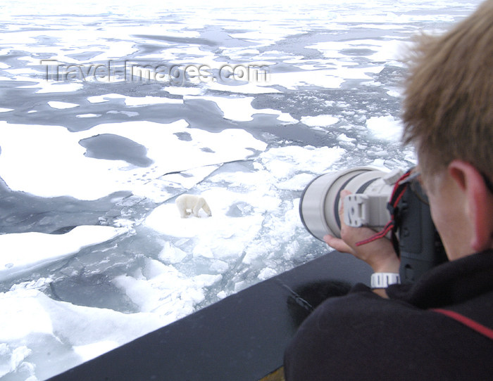 franz-josef56: Franz Josef Land Photographer shooting a polar bear from the cruise ship - Arkhangelsk Oblast, Northwestern Federal District, Russia - photo by Bill Cain - (c) Travel-Images.com - Stock Photography agency - Image Bank